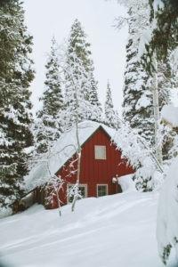 Śniegołapy na dachu