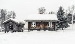 Śniegołapy